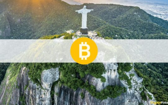 48% of Brazilians Support Making Bitcoin Their Official Currency