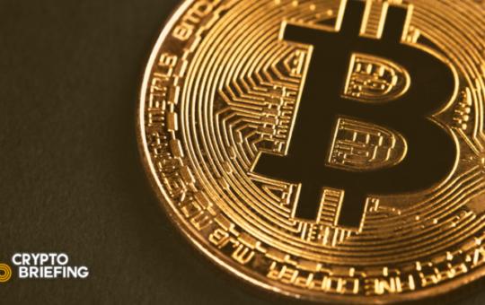 Bitcoin Whales Accumulate as Bitfinex Long Calls Surge
