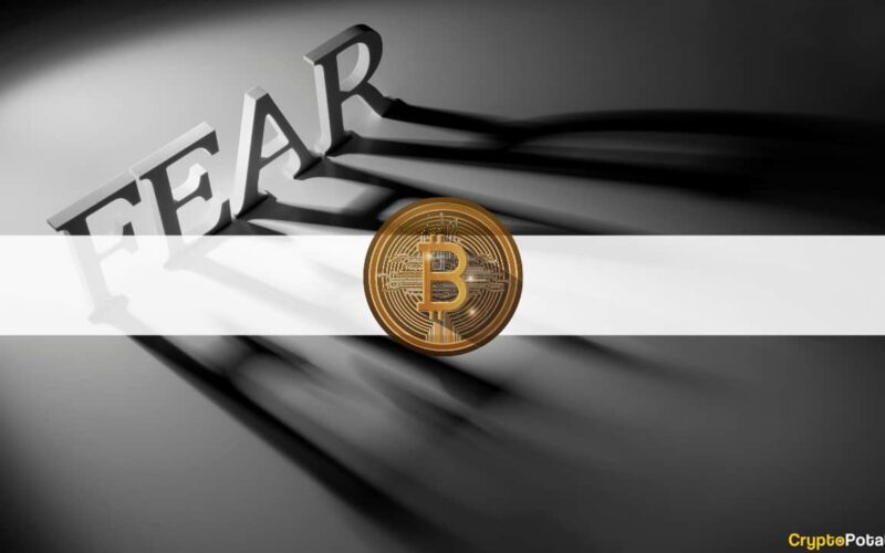 Extreme Fear Among Bitcoin Investors for the First Time in Two Months